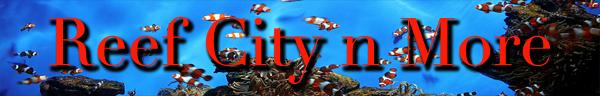 reefcity